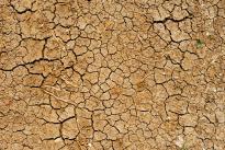 英媒:再无视大气变化  人类文明或在2050年崩溃