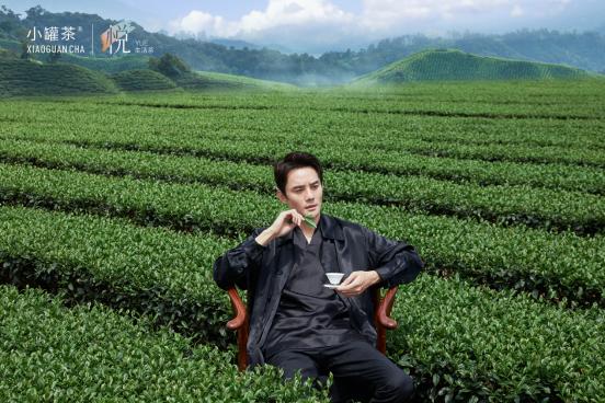 王凯代言小罐茶悦系列生活茶看重的是什么?品质+匠心!